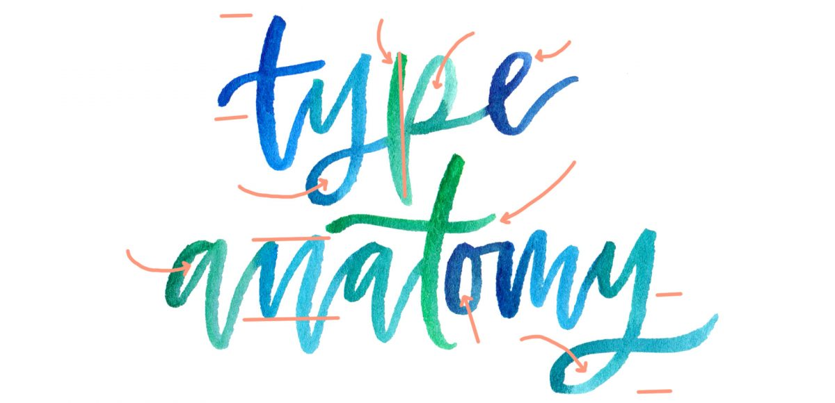 A Colorful Crash Course in Type Anatomy - Every-Tuesday