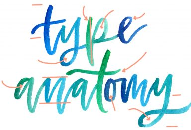 a colorful crash course in type anatomy